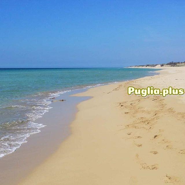 Die schönsten Strände im Salento - neuer Beitrag auf Puglia.plus #traumstrand #vitaminsea #sandstrand #salento #apulien #reisetipps #mehrmeer #meerverliebt #meergehtimmer #sandburgenbauen