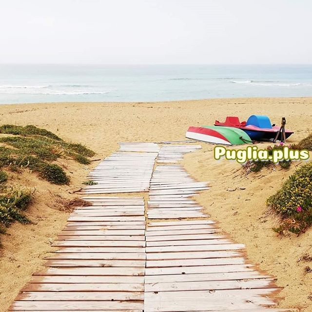 Wege zum Meer. Lieblingswege. #mehrmeer #strandliebe #meerverliebt #strandspaziergang #meergehtimmer #strandweh #meernostalgie #apulien #süditalien #salento