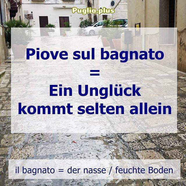 Monatlich jeden 23. stellen wir 2-3 Redewendungen und Pharsen vor. Im Mai sind es 2 und die 1. Redewendung für diesen 23. ist:  Piove sul bagnato = Ein Unglück kommt selten allein piovere= regnen il bagnato = der nasse / feuchte Boden  Woher diese Redewendung stammt und sogar mehrere Beispielsätze gibt es auf unserer Seite über Redewendungen.  Italienisch lernen und Wortschatz verbessern, Stück für Stück. 2 bis 3 am 23. Mehr auf: https://www.puglia.plus/reisetipps-apulien/italienische-redewendungen-verstehen-lernen/  #italienischeredewendungen #2bis3am23 #italienischlernen #wortschatzverbessern #wortschatzerweitern #italienischdeutsch #sprachenlernen #italienischverbessern
