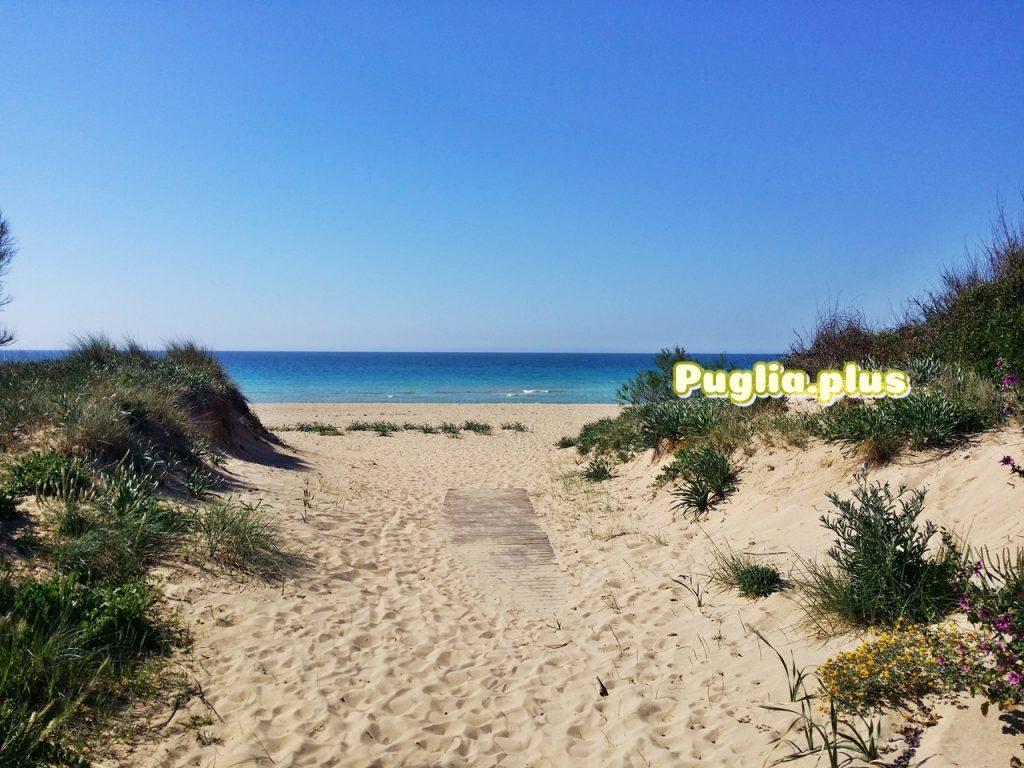 Strandurlaub in Apulien