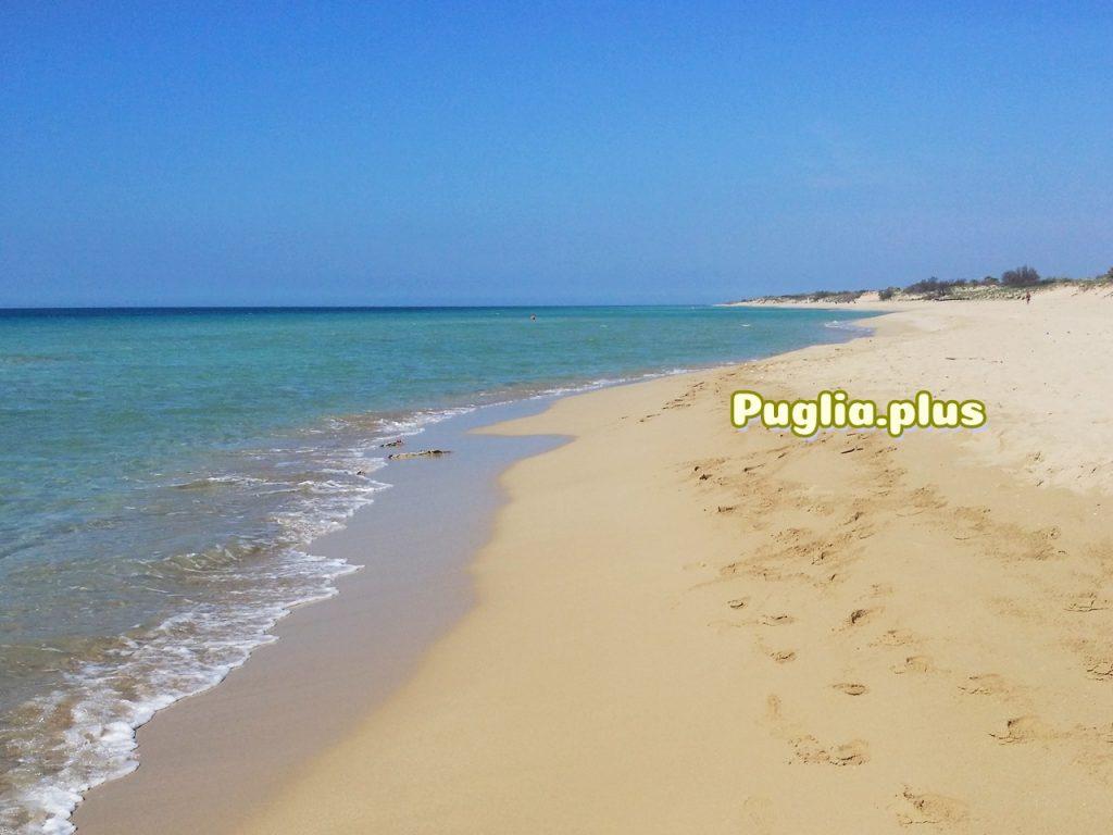 Karibik in Südeuropa: Pescoluse im Salento